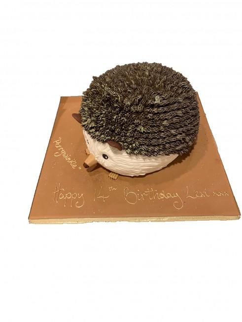 Marvelous Hedgehog Birthday Cake Funny Birthday Cards Online Inifodamsfinfo