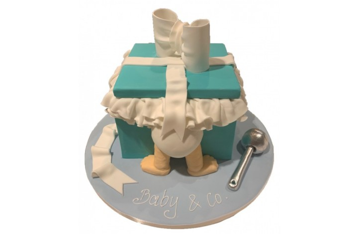 Baby & Co Cake