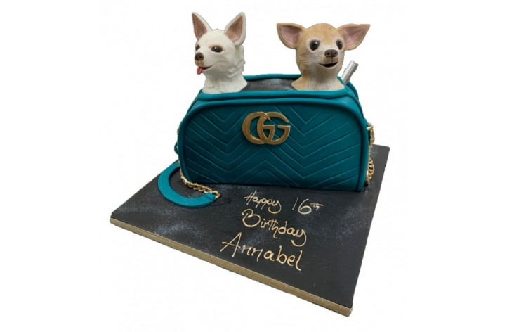 Chihuahua Dogs in Bag