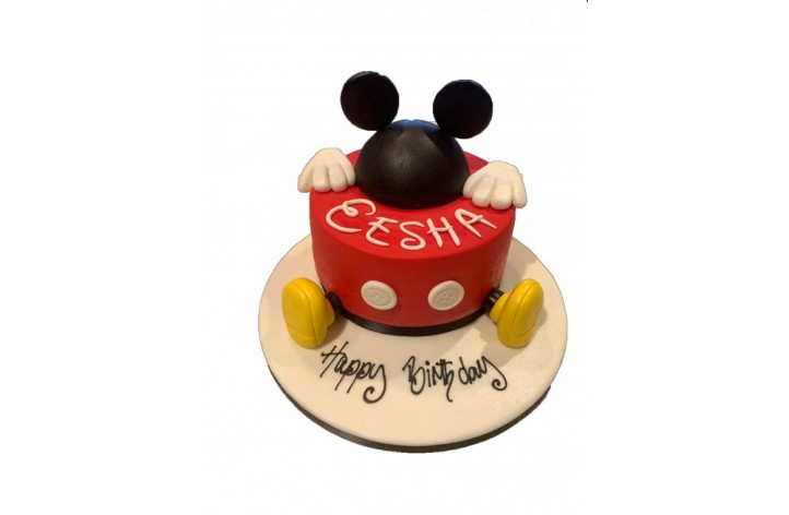 Mickey Mouse and Name
