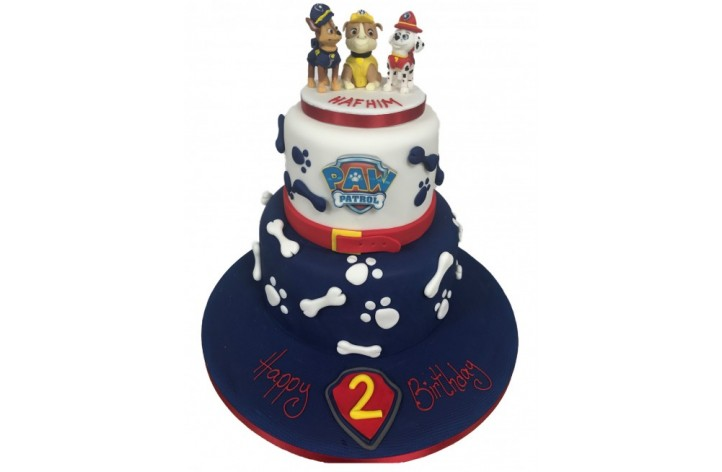 Paw Patrol Double Tier Cake