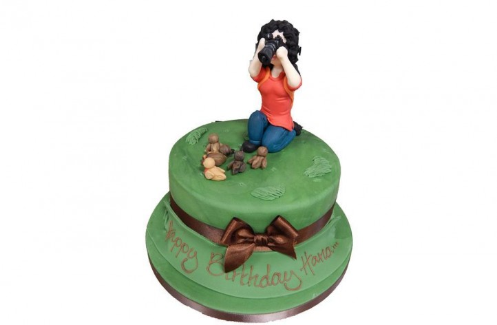 Bird Watching Cake
