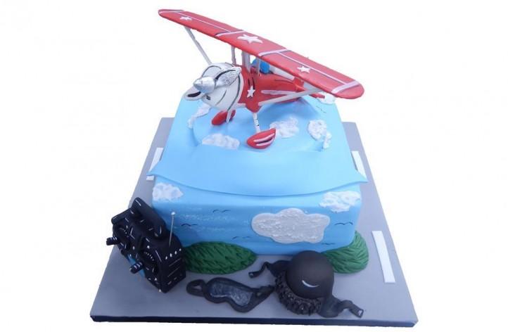 Sugar Plane Cake